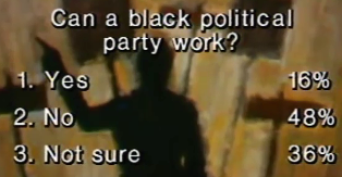 Can A Black Political Party Work?
